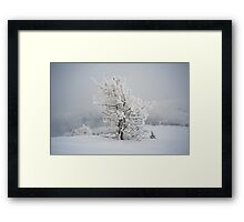 Small Mountain Tree in Snow - landscape Framed Print