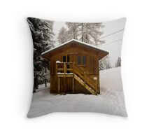 Two Storey Ski Toilet Throw Pillow