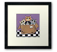 Mail Order Kittens Framed Print