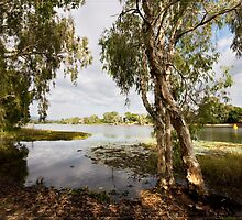 Upper Ross River, Townsville FNQ by Chris Cohen