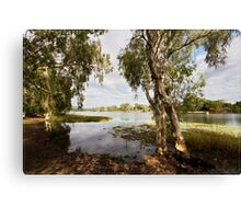 Upper Ross River, Townsville FNQ Canvas Print