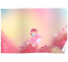 Candy Pink Poster