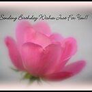 HAPPY BIRTHDAY VIV!!!!! by rasnidreamer