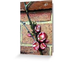 Just quince  Greeting Card