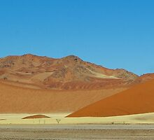 dunes in Sossusvlei by Martina  Stoecker