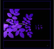 ultra violet leaves greetings by Alyson Fennell