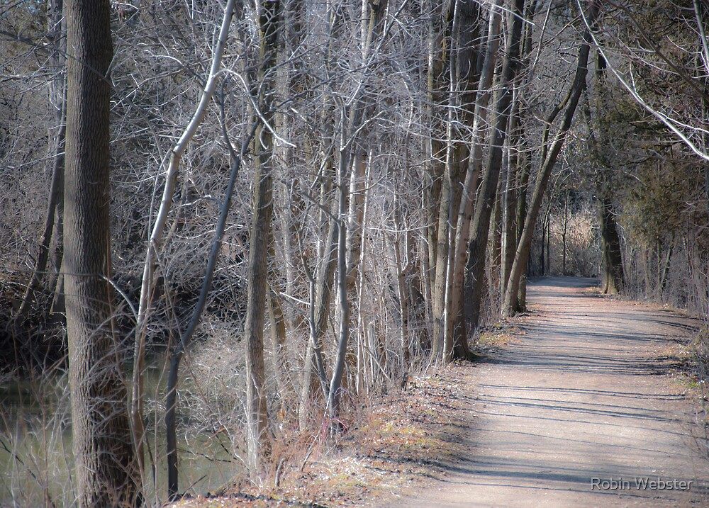 Path-ology by Robin Webster