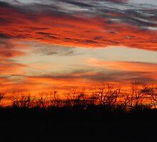 Fire in the Sky by Mark McReynolds
