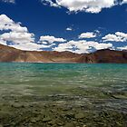 Heavenly Ladakh by Urban-Clicks