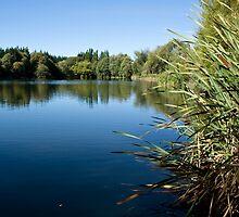 Kaiapoi Lake No. 1 by Belinda Osgood