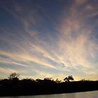 Texas Sky  by marilittlebird