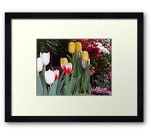 Flowers - Flores Framed Print