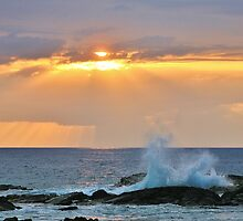 Pacific Sunset by Randy Richards