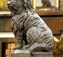 Greyfriars Bobby by Martina Fagan