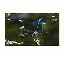 Fairy Pond Art Print