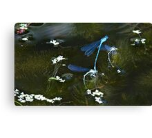 Fairy Pond Canvas Print
