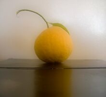 Grapefruit Reflected by Jing3011