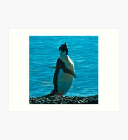 Penguin Swirl Art Print