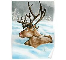 Reclining Rudolph Poster