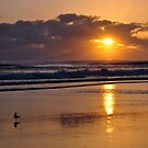 Currumbin Beach 11-2-12 by BK Photography