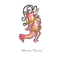 Shrimp Scimpi Photographic Print