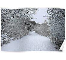 Winter in Kent Poster