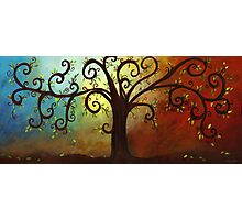 Curly Branches Tree Photographic Print