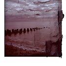 Beach Polaroid by carrieH