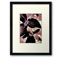 Wildflower Art Framed Print