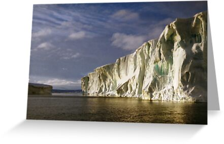 Iceberg at Cape Roget by Carole-Anne
