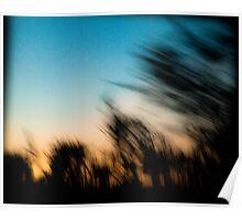 Impressionist Trees, Serengeti, Tanzania Poster