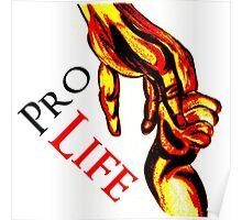 Pro Life Logo Poster