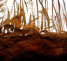 river bank below... by banrai