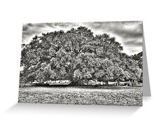 Childhood Pleasures in the Great Fig Tree Greeting Card