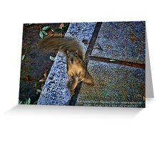 Squirrel Texas Ranger at the State House in Austin Greeting Card