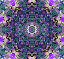 Shades of Purple by Esperanza Gallego