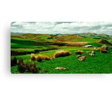 Hokonui hills Southland NZ Canvas Print