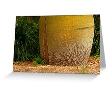 Giant Boab Tree Greeting Card