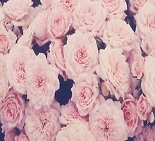 Roses by infiniti