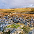 Early Light in the Dales by Andrew Leighton