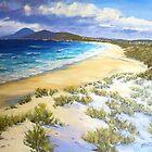 Cape Hawke - Forster by Hugh Cross
