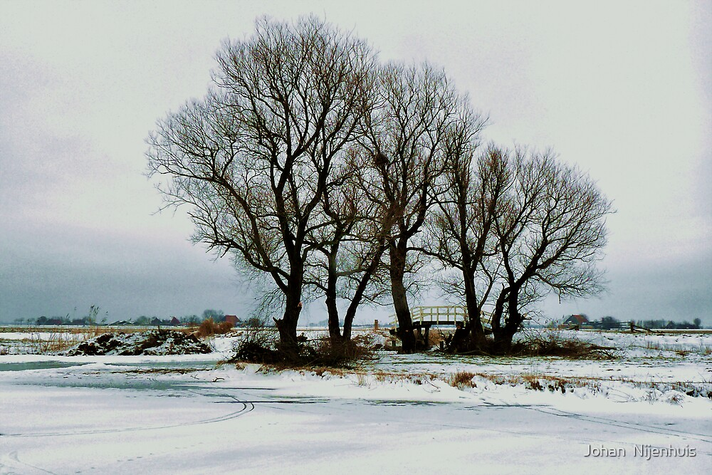SEVEN TREE'S AND A BRIDGE ON A COLD AND DARK WINTERS DAY by Johan  Nijenhuis