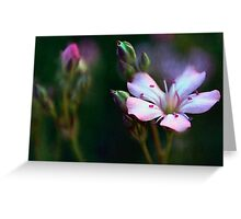 Delicate Pink Flowers Painting Greeting Card
