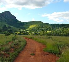 red dirt, green grass.  mlilwane wildlife sanctuary by mellychan