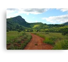 red dirt, green grass.  mlilwane wildlife sanctuary Canvas Print