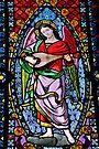 Stained Glass, Santa Maria de Montserrat, Barcelona, Spain by buttonpresser