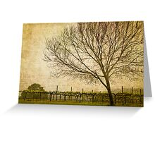 Vineyard with Tree Greeting Card