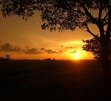 Reaching the end of daylight by nevt
