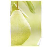 ...pear....... Poster