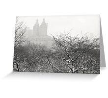 Snow Globe - Winter - Central Park - New York City Greeting Card